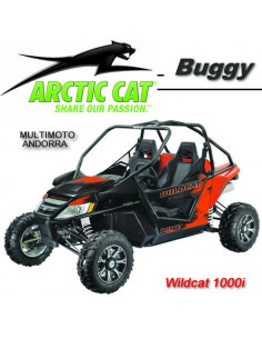 Wildcat 1000i LTD