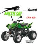 DVX 300
